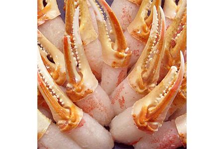 【2628-0536】本ずわい蟹 カニ爪セット 1kg