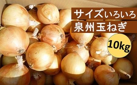 B0012.サイズいろいろ泉州玉ねぎ10kg【限定10ケース】