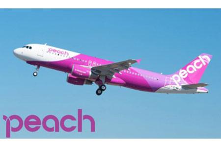 ピーチ航空のポイントギフトをゲット(・∀・)b