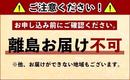 FUNAI 2チューナー/HDD搭載 ブルーレイディスクレコーダー2TB【納期2~3か月】
