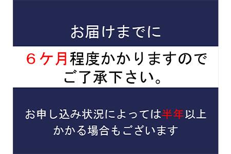 【2635-0158】TOYO FRAME E-MTB AEB