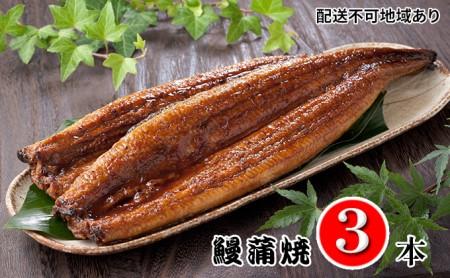 鰻蒲焼3本セット