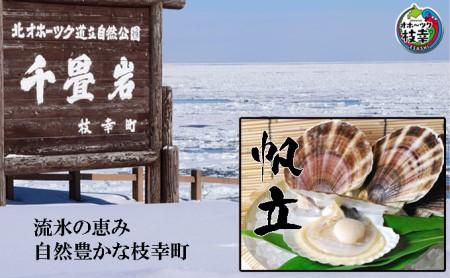 【枝幸ほたて】海洋食品 冷凍ほたて貝柱1kg
