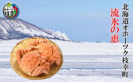 冷凍毛がに(小) 250g~400g×2尾【オホーツク枝幸産】海洋食品