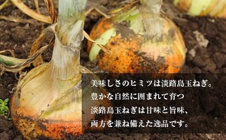 BYB2:【2~3ヶ月待ち】累計100万個突破!淡路島玉ねぎ 生 ハンバーグ 特大200g(無添加)冷凍10個セット