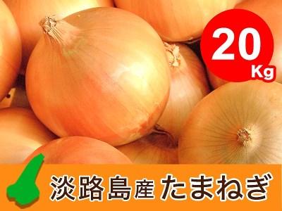 EB19◇【20kg】特選 淡路島たまねぎ なかて品種(令和3年5月下旬以降発送 先行受付品)