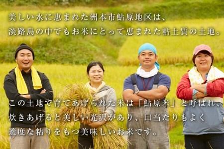 FF12◇鮎原米 5kg【淡路島のブランド米】
