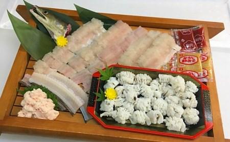 B069◇淡路島由良産活きハモ湯引き・ハモ鍋セット(4人前)