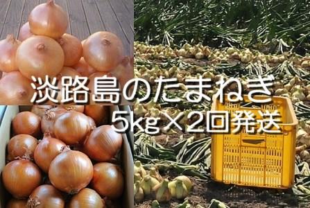 H033◇淡路島産 中晩生たまねぎ10kg(5kg×2回発送)