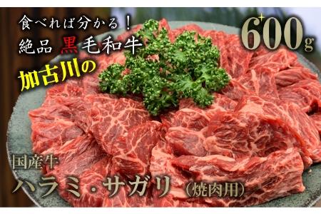 国産牛 焼肉用(ハラミ・サガリ)600g