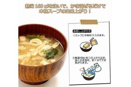 DQ21SM-C 広瀬青果のオニオンスープとお味噌汁セット(50個)