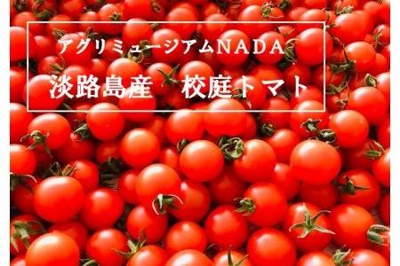 EK05SM-C アグリミュージアムNADA 校庭トマト 2kg[8月下旬発送開始]