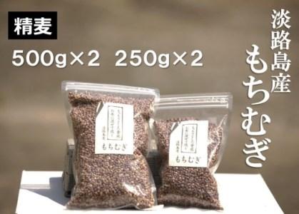 FM01SM-C 【マルジンファーム】淡路島 南あわじ産 もちむぎ 1.5kg