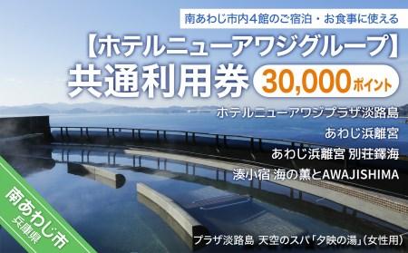 DM08SM-C 【ホテルニューアワジグループ】南あわじ市内施設 共通利用券