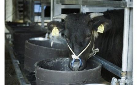 DN09SM-C 【緊急支援品】垣牧場直売「淡路姫和牛」切り落とし 1.2kg