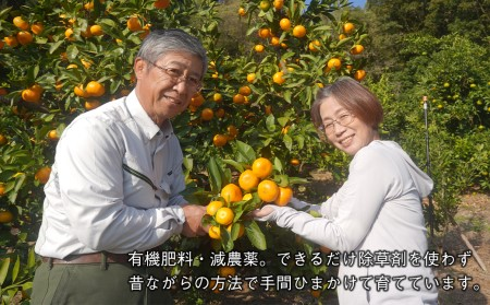 ak03001 片山農園の淡路島みかん(温州みかん)3.0㎏とキウイ2.0㎏