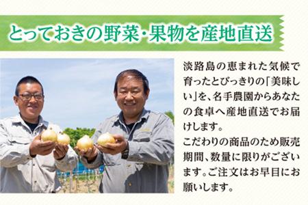 an03001 名手農園の淡路島特産玉ねぎ10kg