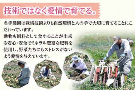 an03006 名手農園の淡路島特産玉ねぎとお米