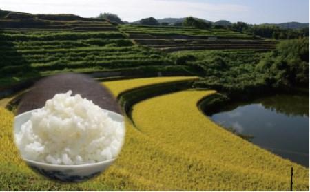 ae01004 【定期便】棚田のおいしいお米半年分5kg×6回