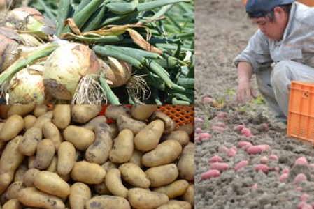 an03004 【定期便】名手農園の淡路島特産玉ねぎ(5kg)とお米(5kg)の10ヶ月コース