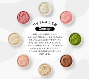 010AE02N.アイスクリーム詰め合わせ(10個)