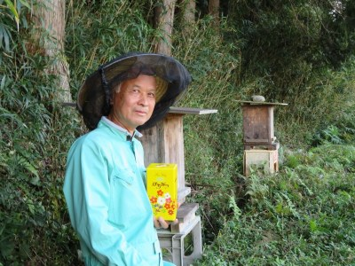 【0501-B20】日本蜜蜂ハチミツ《吉野ハニー》
