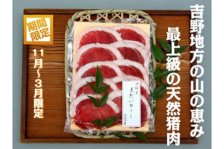 【4502-A18】吉野産 天然猪肉 特選吉野牡丹480g《枳殻屋》