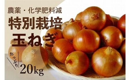 【A010-1】津別町産特別栽培玉ねぎ20kg