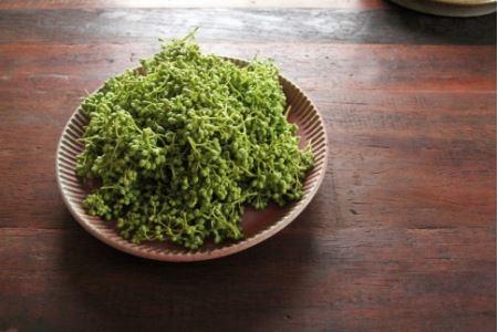 【熊野牛】焼肉セット 1kg (粉山椒付)