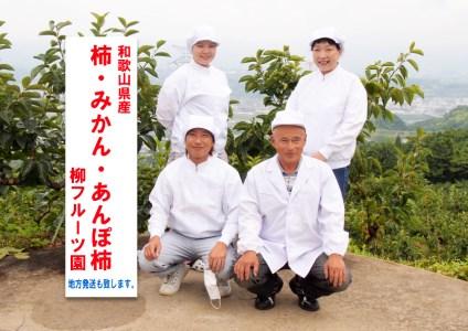 【2020年秋・冬発送】柳フルーツ園 柿のドライフルーツ(10袋)