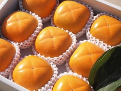 和歌山県橋本市 ケーズファーム最高級 平たねなし柿