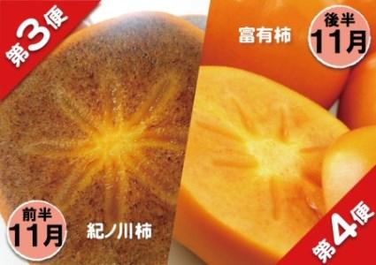 和歌山県橋本市 フルーツ定期便 秋のはしもと旬果(10月~12月の3ヵ月・6回のお届け)【数量限定】