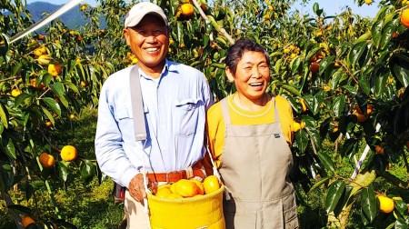 【2020年秋・冬発送】太陽の光をたっぷり浴びた松岡農園の富有柿2Lサイズ(14個)