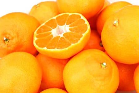 柳フルーツ園 みかん(約10kg)