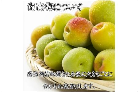 紀州南高梅 はちみつ梅3Lサイズ 1.2kg(塩分6%)