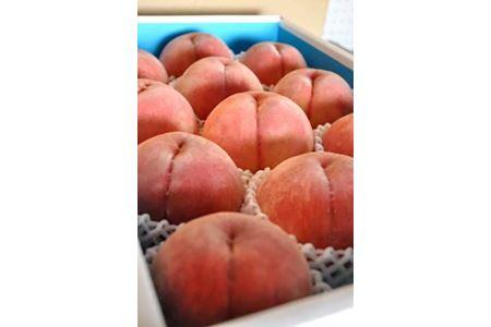 ★2020年7月~8月発送★【特選】<甘い香りと果汁が自慢>桃 4kg(9~12玉)