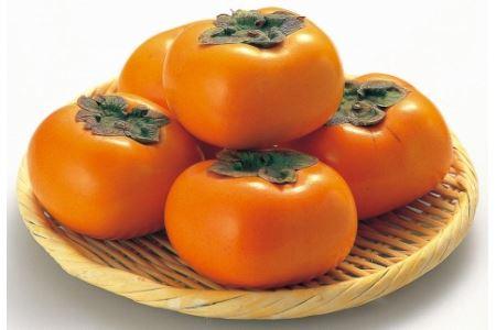 2020年9月以降発送【本場】和歌山県九度山町産 平核無柿<ご家庭用> 10kg