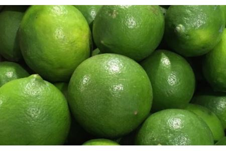【産直】和歌山産グリーンレモン約3kg(サイズ混合)