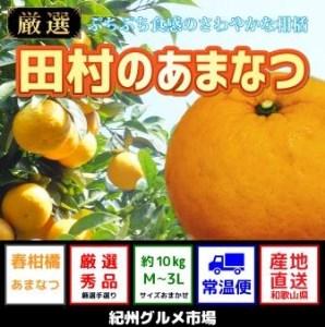 人気の田村のあまなつ(M~3L)