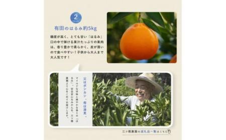 YAS-T03_【定期便】湯浅町の生産者イチオシ定期便 毎月お届け×12ヶ月