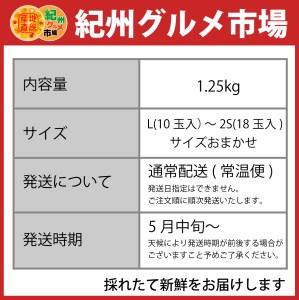 【高級】ハウスみかん 約1.25Kg【紀州グルメ市場】◆◆