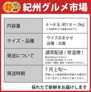 【高級】和歌山ブランド あら川の桃 【白鳳】 約2Kg ※北海道、沖縄、離島は発送不可