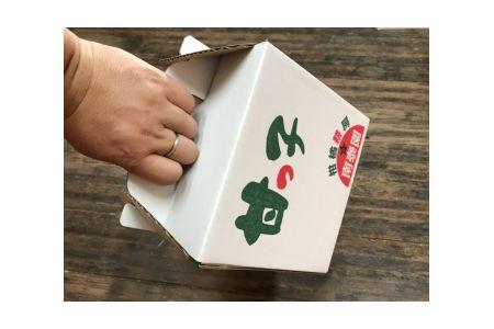 【2625-0070】《手さげ箱》ちょっと傷【完熟早生・有田みかん】SSサイズ25個入×4箱【南泰園】