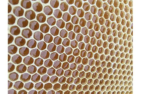 【2625-0080】【限定30セット】ありだみかん蜂蜜 ありだ里山の蜂蜜