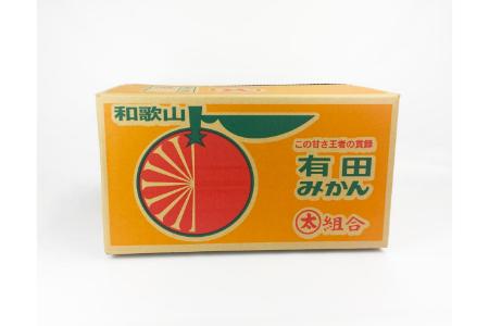 【2625-0327】【早生】有田みかん10kg(M・Sサイズいずれか/ご家庭用)