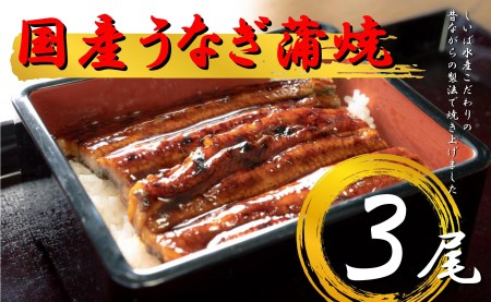 【2625-0337】国産うなぎ蒲焼3本セット
