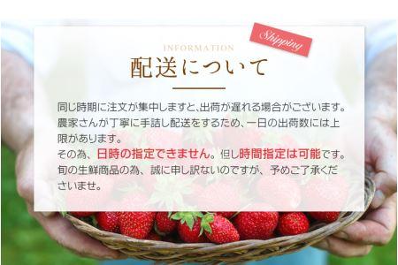 紀州まりひめ苺 250g~300g×2パック ※北海道、沖縄・離島には発送不可。万が一誤ってご注文いただいてもキャンセルさせていただきます。 ※2020年1月中旬~5月下旬頃順次発送予定