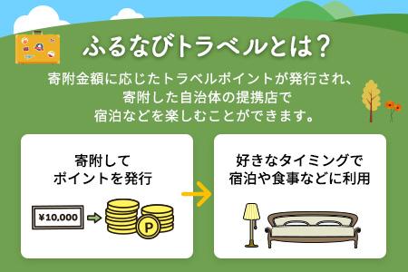 【有効期限なし!旅行で使える】和歌山県白浜町トラベルポイント