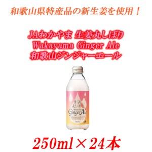 JAわかやま生姜丸しぼりWakayamaGingerAle和歌山ジンジャーエール250ml×24本