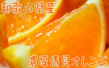 【春の美味】【農家直送】濃厚清見オレンジ(ご家庭用)4kg【北海道・沖縄配送不可】